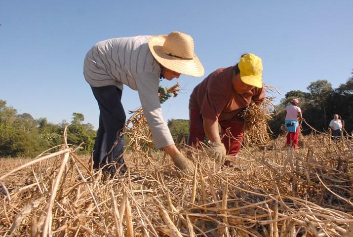 agricultura familar 25 10 2019