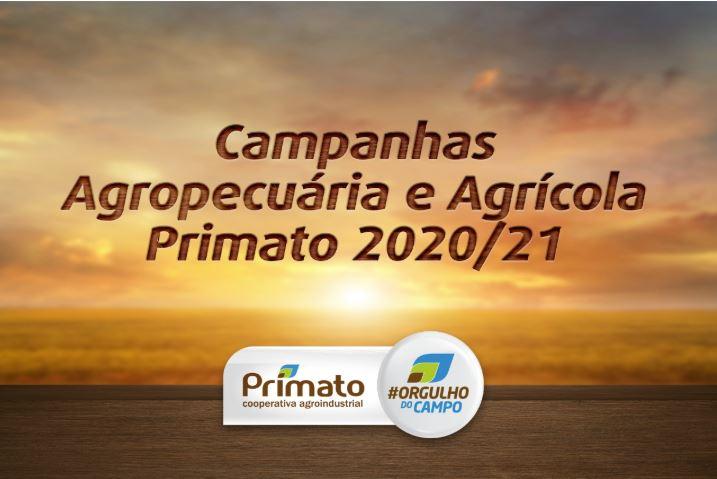 primato II 27 01 2020