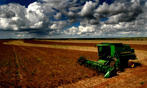 agricultura 13 11 2012