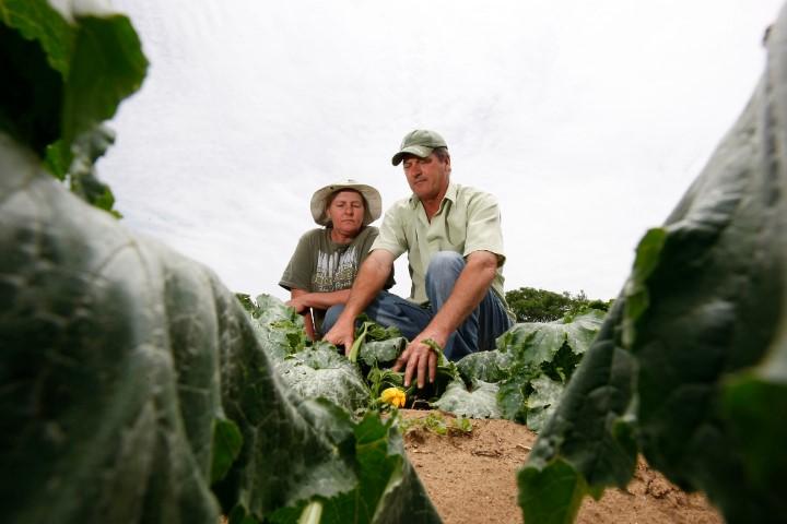 agricultura familiar 03 06 2020